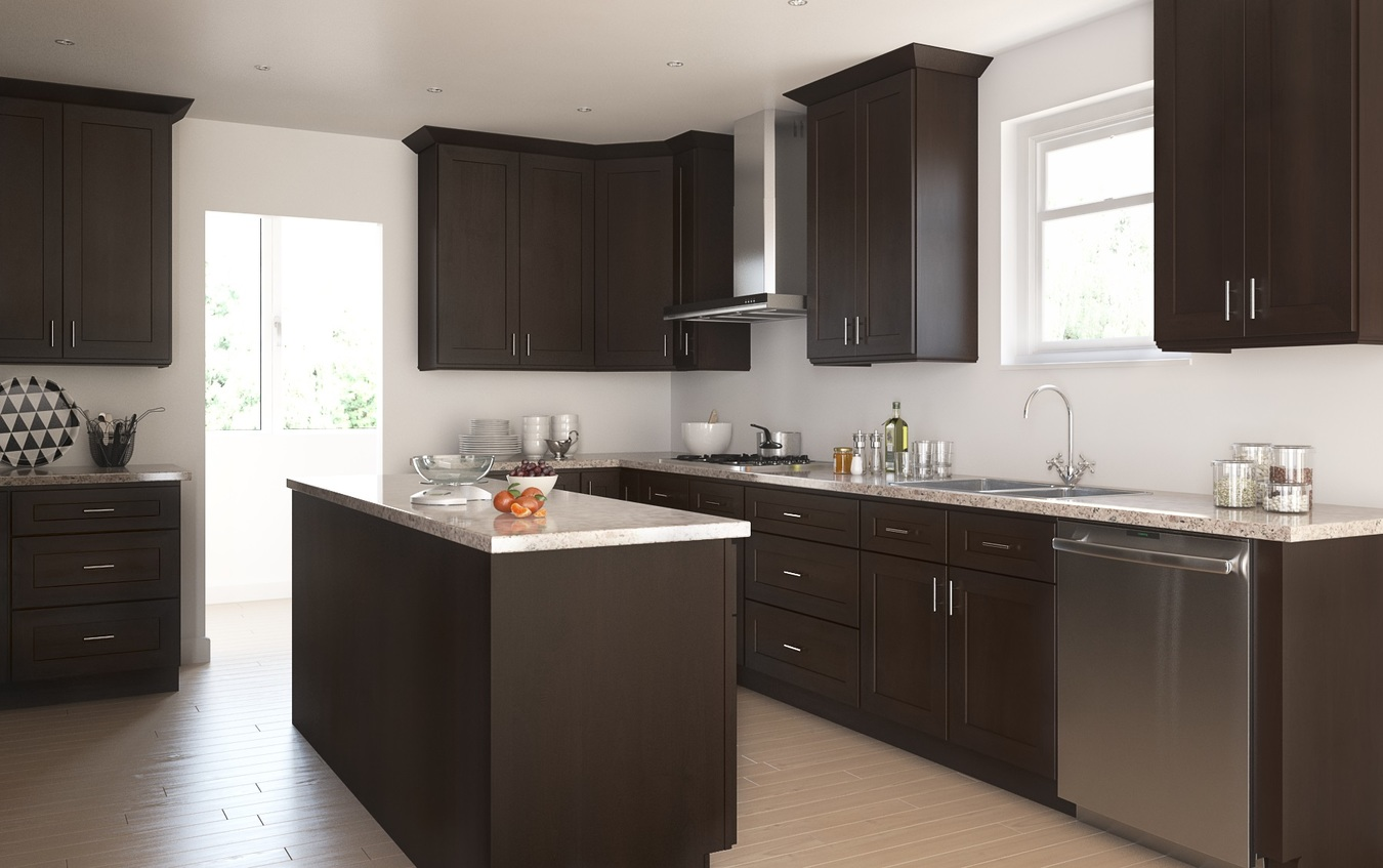 Interior Dark Chocolate Kitchen Cabinets dark chocolate shaker ready to assemble kitchen cabinets dark