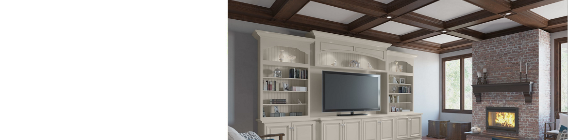 TV Room Cabinetry